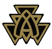 associate_pin__Bronze_
